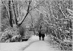 Im Winterwunderland (3)