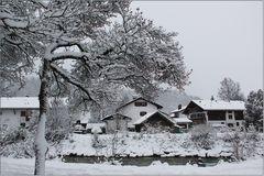 Im Winterwunderland.