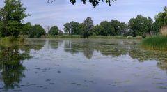Im Wörlitzer Landschaftspark II
