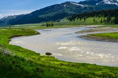 Im Yellowstone NP                                     DSC_4912-2