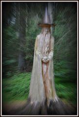 Im Zauberwald...
