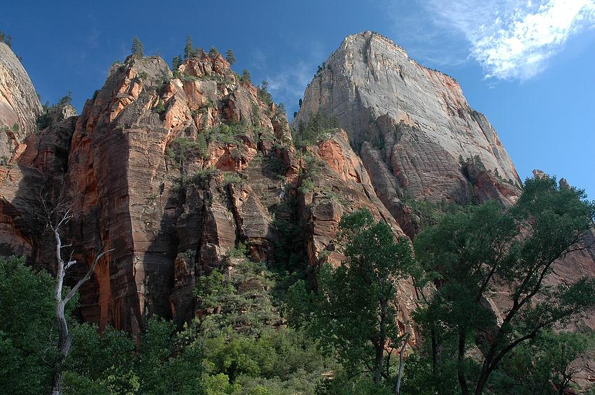 Im Zion Canyon 4