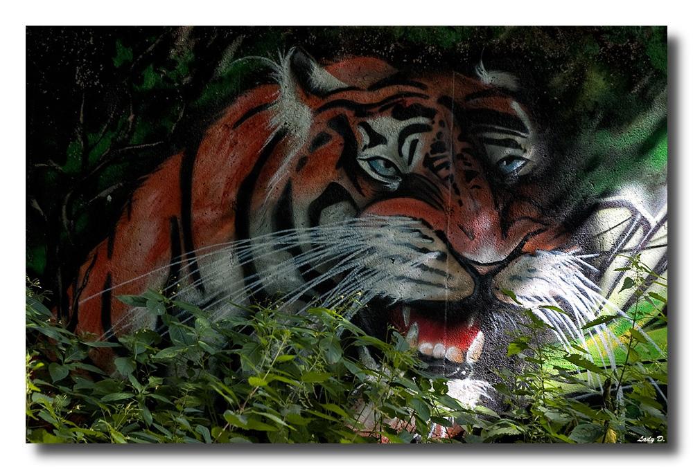 im zwickauer Dschungel... :-)
