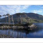 I...Magical Loch Assynt...I