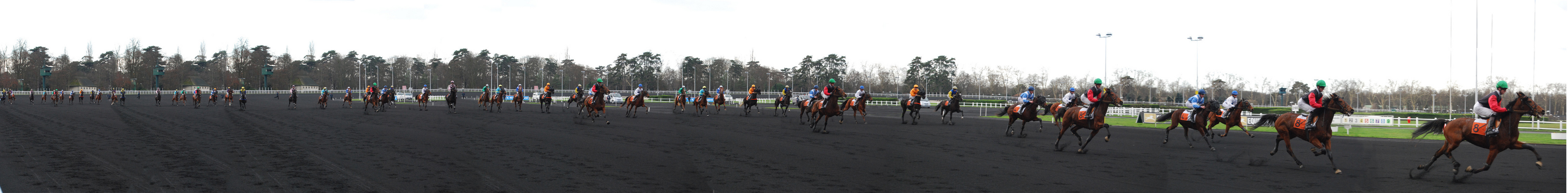Immense vincennes