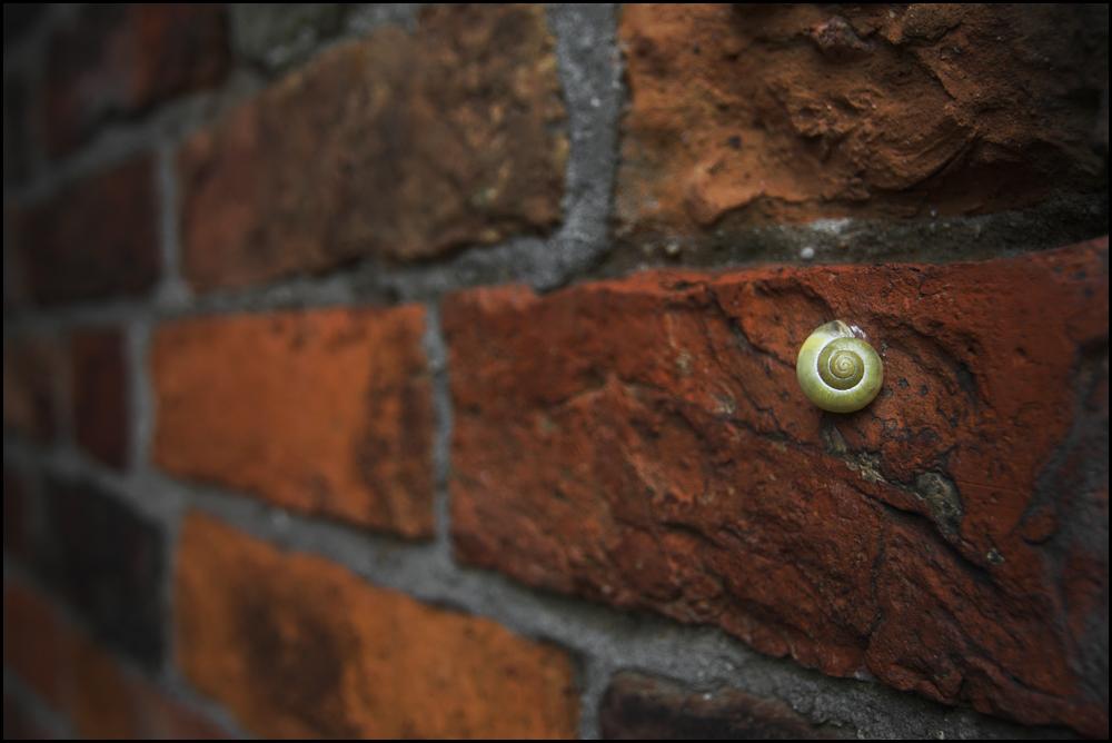Immer an der Wand lang...