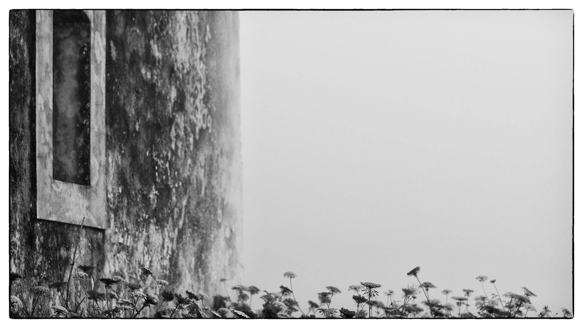 im.Nebel