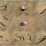 Impresiones del Desierto