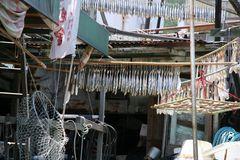 Impression in einem Fischerdorf in China