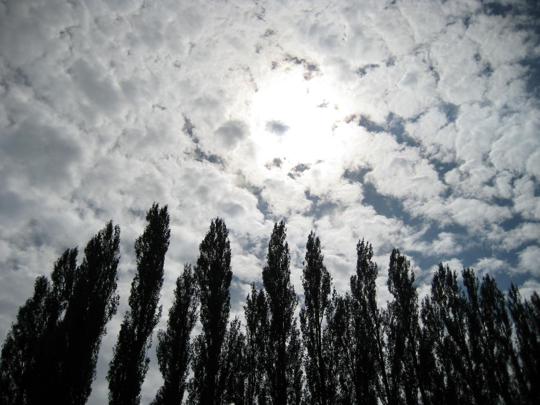 Impression solaire
