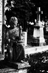Impression vom Pragfriedhof