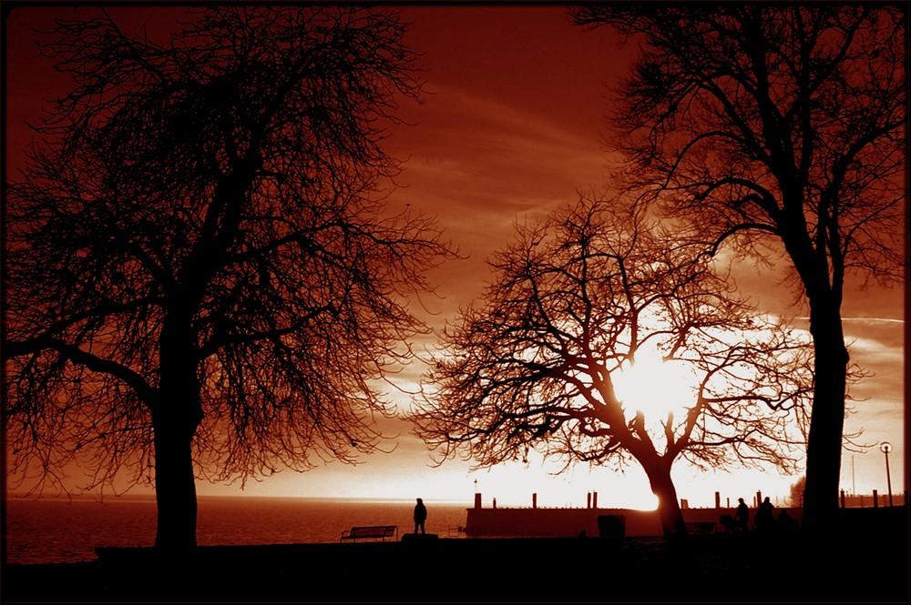 Impressionen 2 Herbst am Bodensee