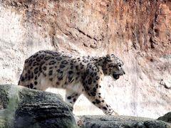 Impressionen aus dem Basler Zoo