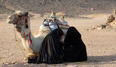 Impressionen aus der Wüste