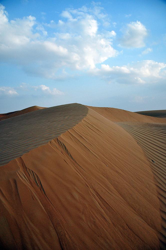 Impressionen aus der Wüste III
