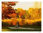 Impressionen - Britzer Garten (5)