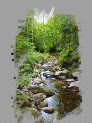 Impressionen der Gerolsauer Wasserfälle/Grobbach  bei Baden Baden