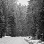 Impressionen im und um den Schwarzwald 2