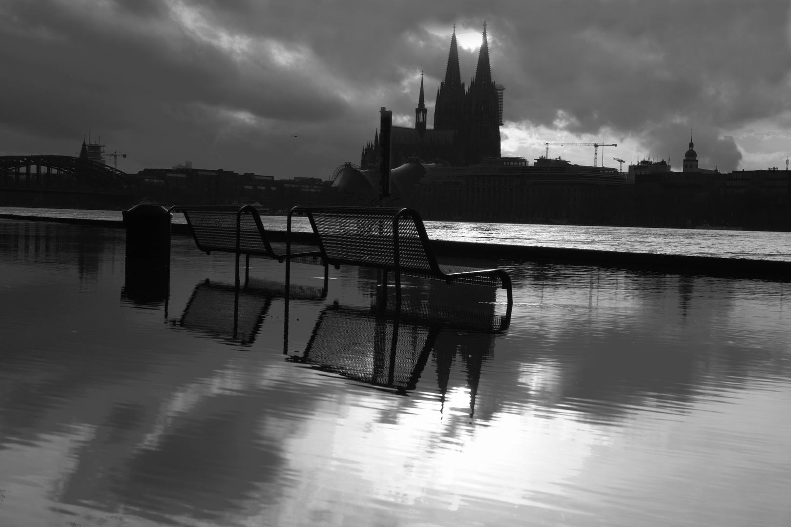 Impressionen zum Hochwasser in Köln Februar 2021