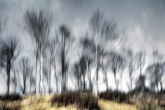 Impressioni invernali
