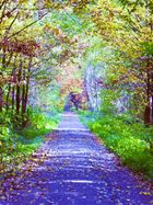 impressionist forest