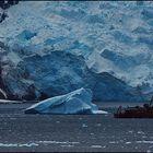 Impressions of Antartica  -  Motiv  vom  Weltenbummler