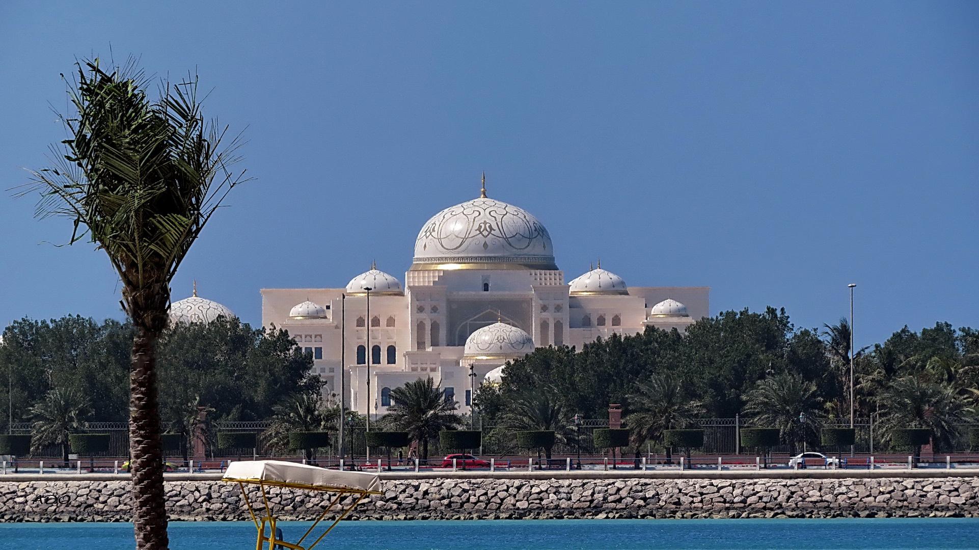 In Abu Dhabi (4)