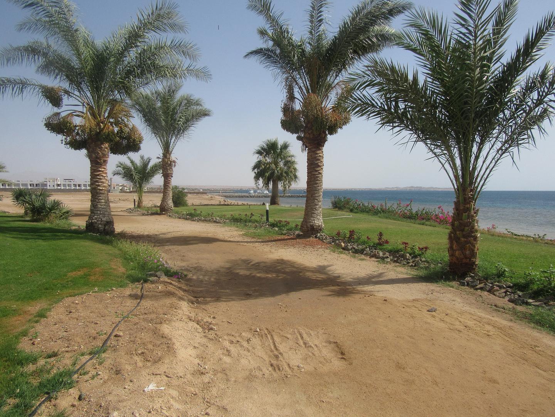 in Agypten