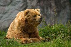 Zoo und Wildpark