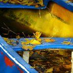 ... in an abandoned canoe