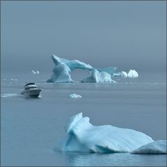 in an arctic mood