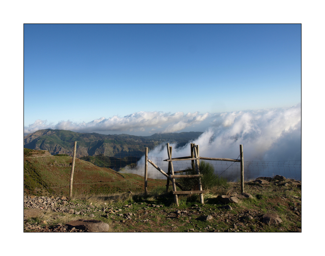 In den Bergen auf Madeira