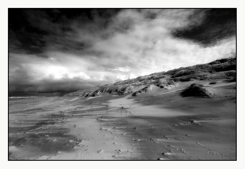In den Dünen II
