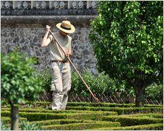 In den Gärten von Villandry IV