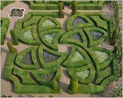 In den Gärten von Villandry XI