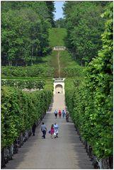 In den Gärten von Villandry XIII