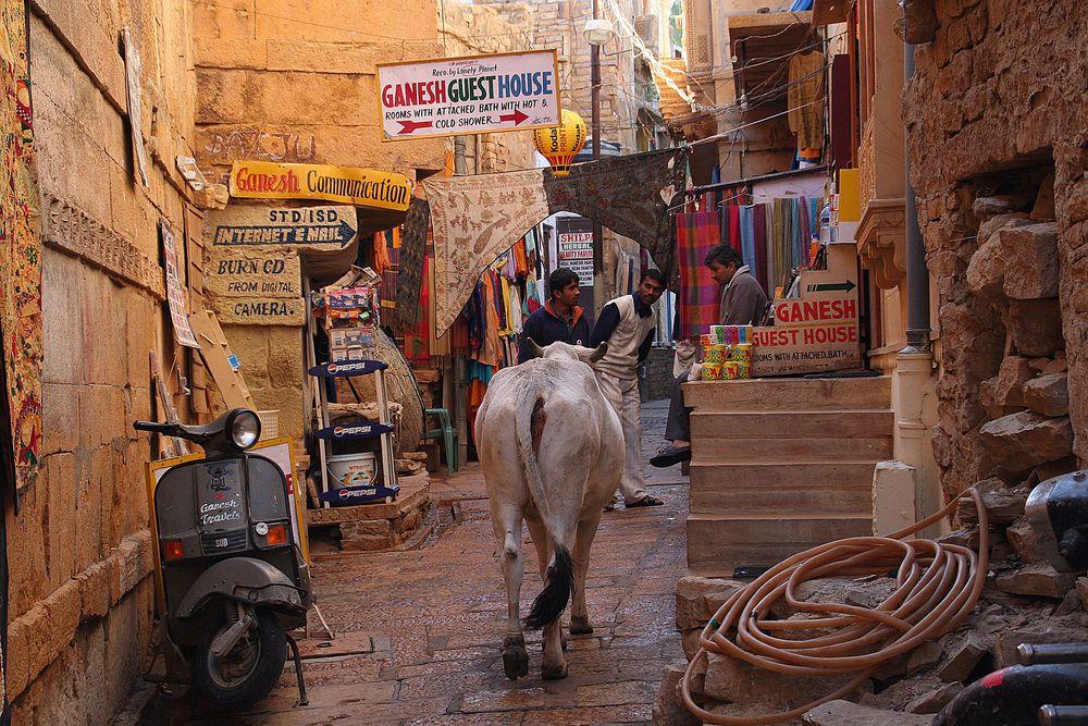 in den Gassen Jaisalmer Rathastan, Indien