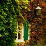 In den Herbst eintauchen...