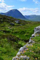 In den Highlands - West Highland Way