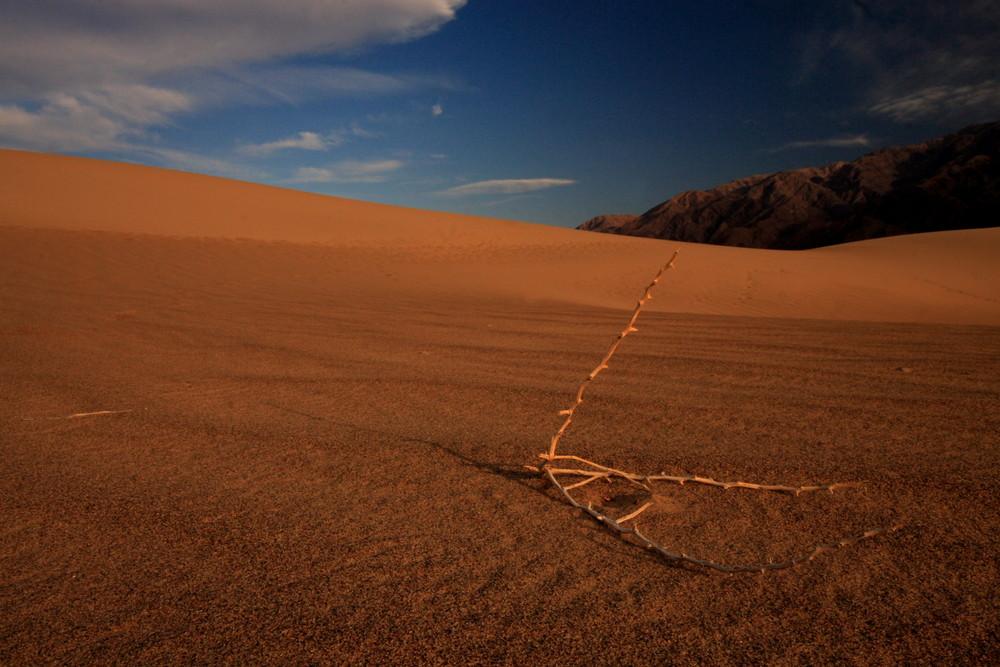 In den Sanddünen im Death Valley NP, Californien