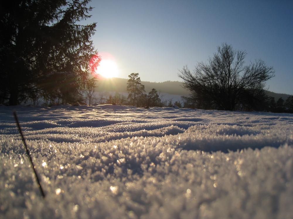 In den Schnee gefallen