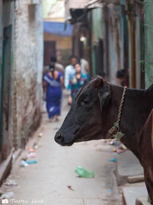 In den Straßen von Varanasi