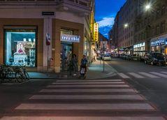 In den Straßen von Wien (292)