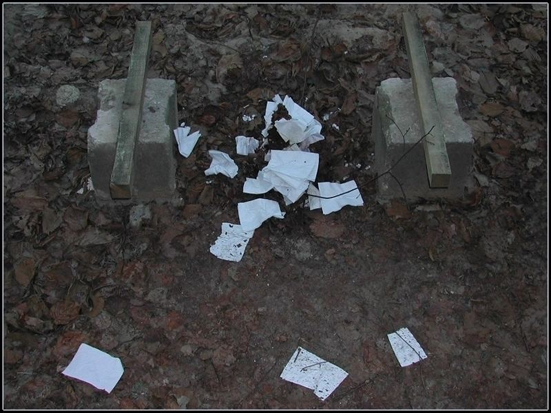 In Den Wald Gekackt Foto Bild Die Toilette Spezial Bilder