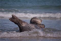 In den Wellen schaukeln...