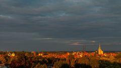 In der Abendsonne (2)