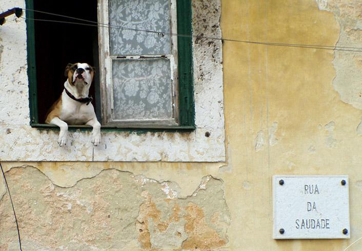 In der Alfama, Lissabon