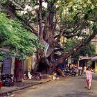 In der Altstadt von Hanoi