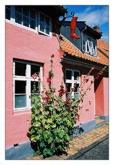 In der Altstadt von Roenne, Bornholm/DK 01