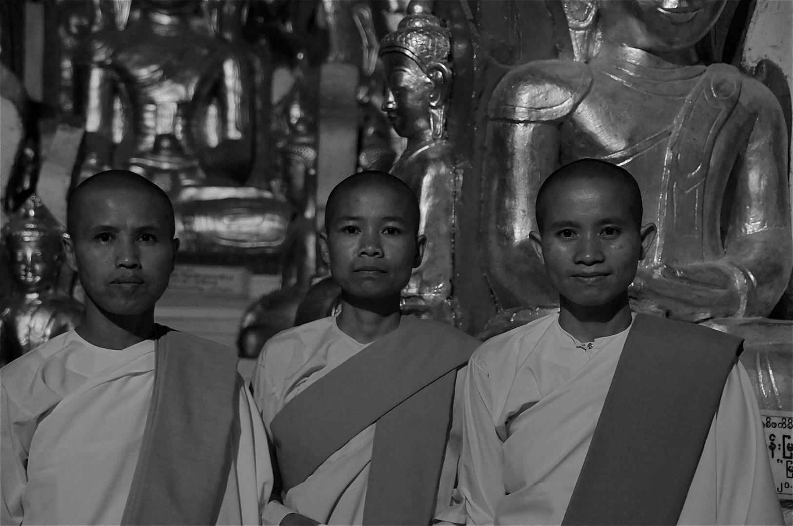 in der buddhahöhle traf ich drei nonnen, pindaya, burma 2011